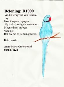 BEKKIE POSTER 001